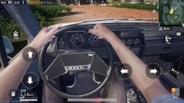 First-Person Perspective While Driving