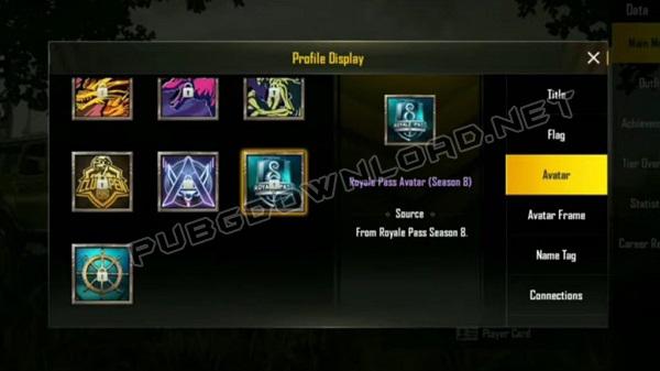Royale Pass Avatar